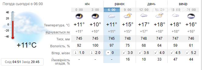 Якою буде погода у Кропивницькому: прогноз на 31 травня, фото-1