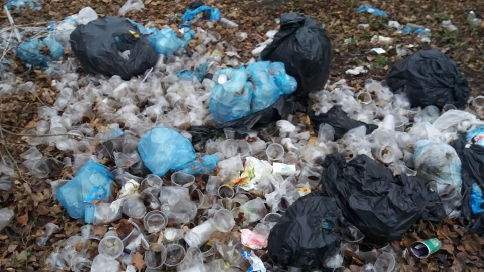 У Кропивницькому в посадку викинули тисячі стаканчиків від квасу. ФОТО, фото-4
