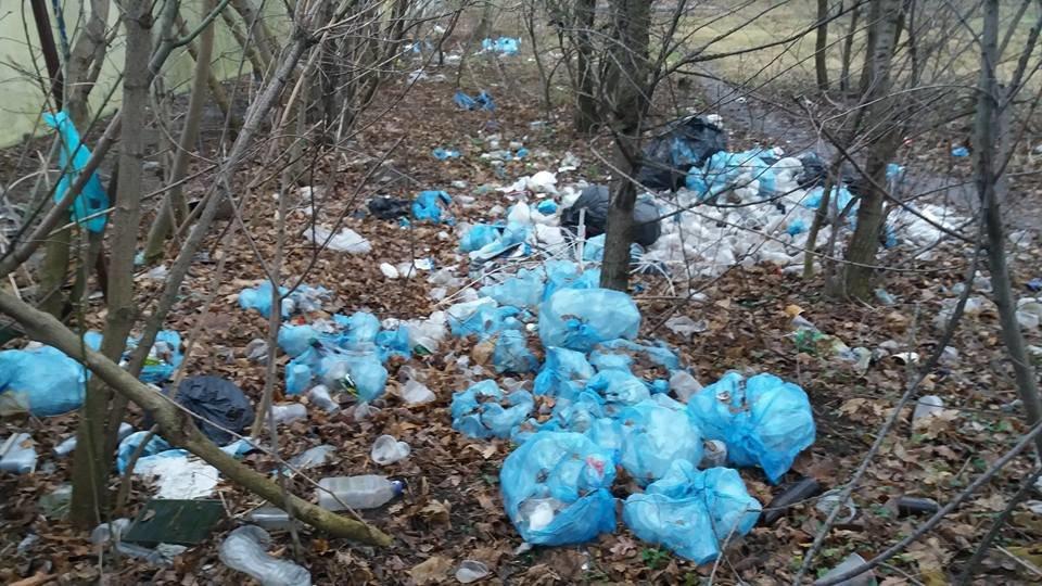 У Кропивницькому в посадку викинули тисячі стаканчиків від квасу. ФОТО, фото-3