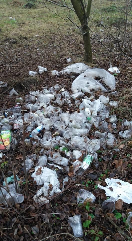 У Кропивницькому в посадку викинули тисячі стаканчиків від квасу. ФОТО, фото-2