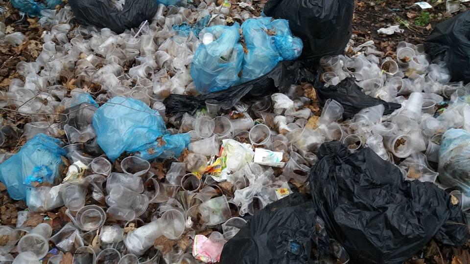 У Кропивницькому в посадку викинули тисячі стаканчиків від квасу. ФОТО, фото-5