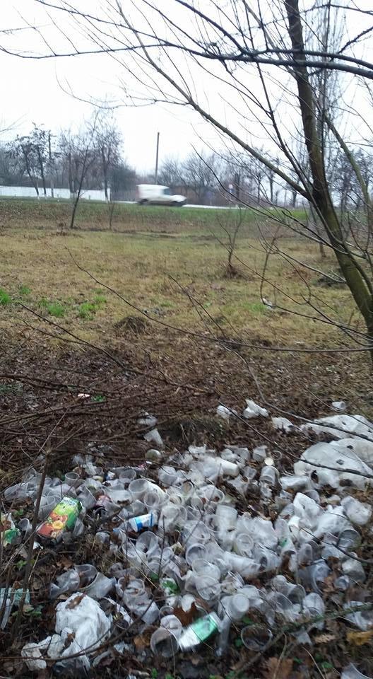 У Кропивницькому в посадку викинули тисячі стаканчиків від квасу. ФОТО, фото-1