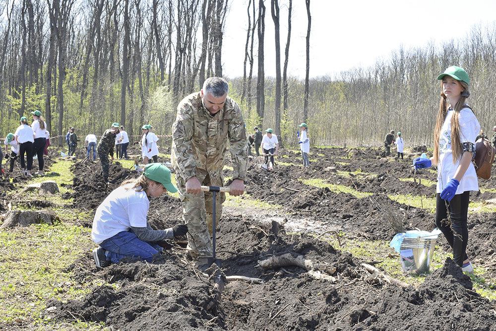 В урочищi на Кiровоградщинi висадили близько 3000 саджанцiв дуба (ФОТО), фото-5
