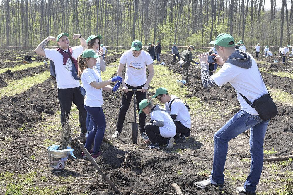 В урочищi на Кiровоградщинi висадили близько 3000 саджанцiв дуба (ФОТО), фото-8