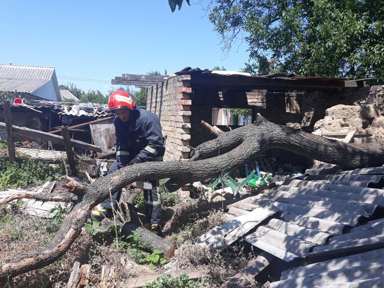 Рятувальники Кіровоградщини ліквідували загрозу від аварійних дерев (ФОТО), фото-3