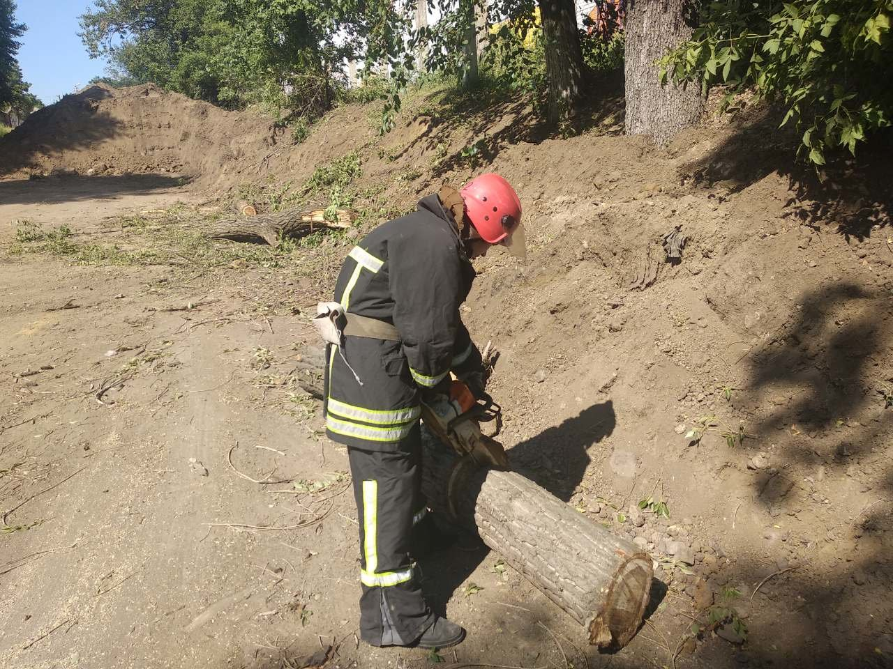 Рятувальники Кіровоградщини ліквідували загрозу від аварійних дерев (ФОТО), фото-4
