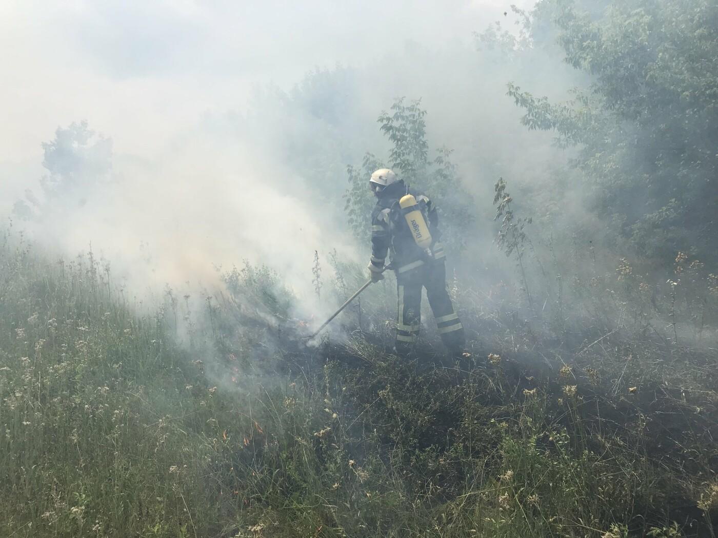 Кіровоградська область: рятувальники загасили 3 пожежі сухої трави (ФОТО), фото-1