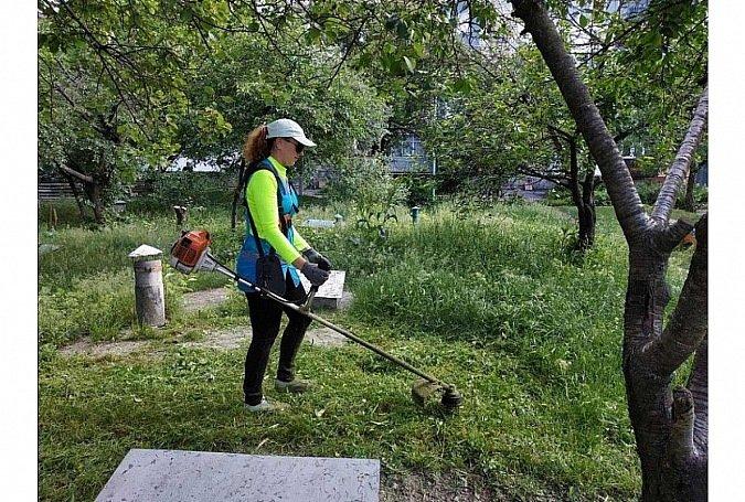 У Кропивницькому штрафуватимуть господарів за безлад на орендованих земельних ділянках (ФОТО), фото-1