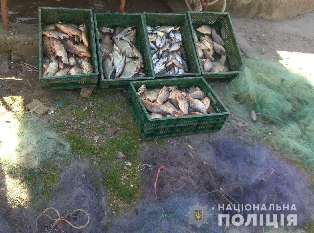 На Кіровоградщині поліцейські спільно з працівниками рибохорони викрили браконьєра (ФОТО), фото-2
